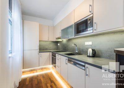 c-417_pronajem_apartmany_praha_albertov_rental_apartments-06