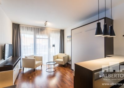 c-420_pronajem_apartmany_praha_albertov_rental_apartments-01