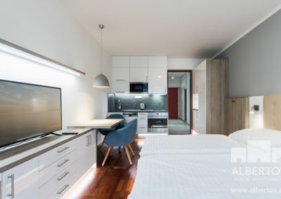 e-211_pronajem_apartmany_praha_albertov_rental_apartments-05