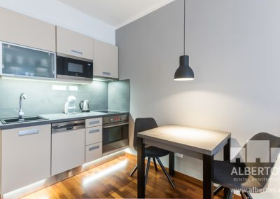 f1-530_pronajem_apartmany_praha_albertov_rental_apartments-06