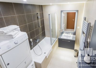 F3-422_2019_pronajem_apartmany_Praha_Albertov_Rental_Apartments-09